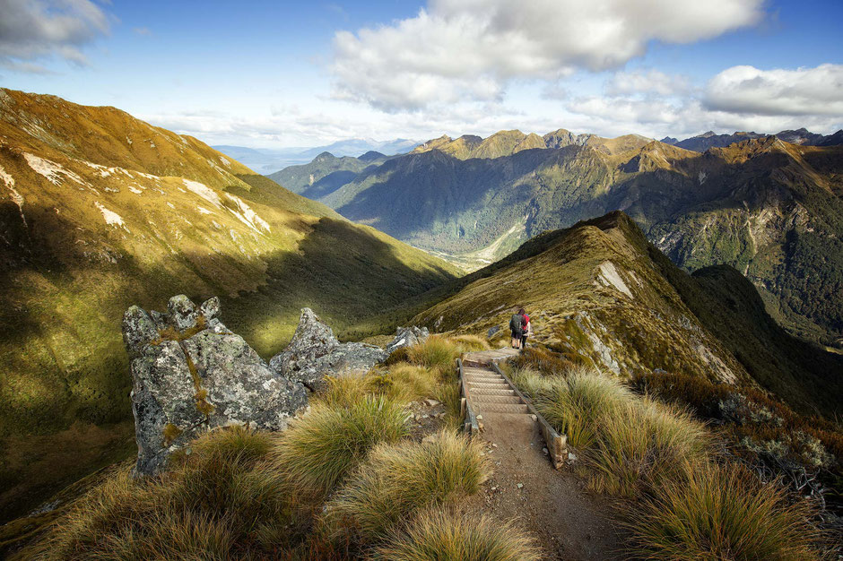 a-downhill-section-of-the-ridgeline-just-past-the-hanging-valley-shelter-on-the-kepler-track